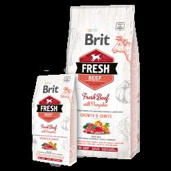 Brit Fresh Junior Talie Mare Vita cu Dovleac