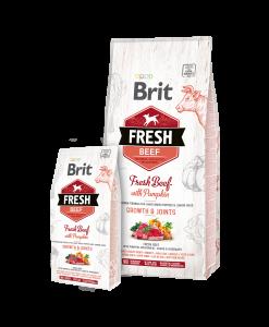 hrana uscata caini brit fresh junior talie mare vita si dovleac