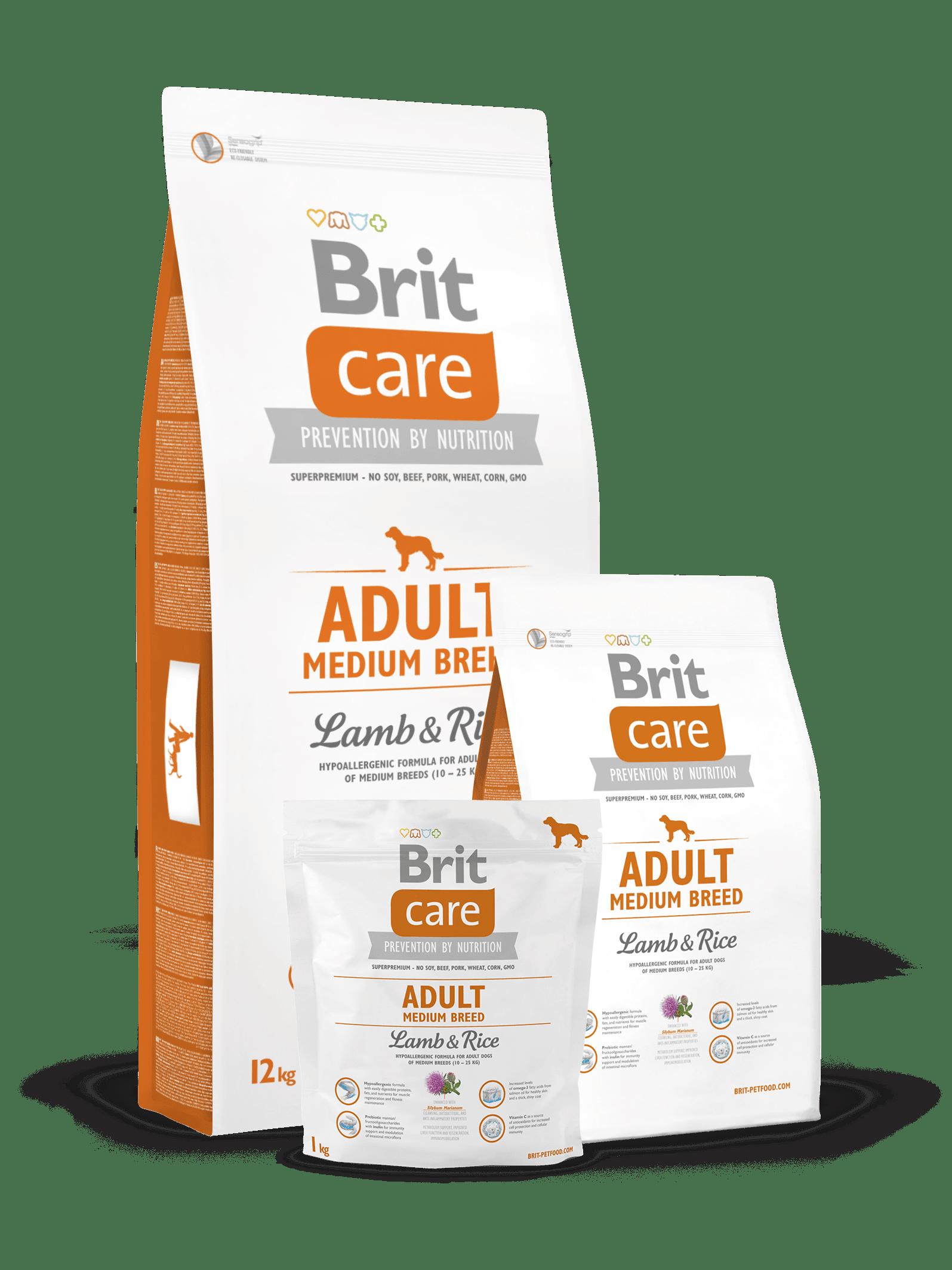 Brit care adult medium breed miel si orez pentru caini adulti de talie medie