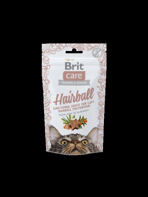 recompense pisici brit care hairball catelulgras