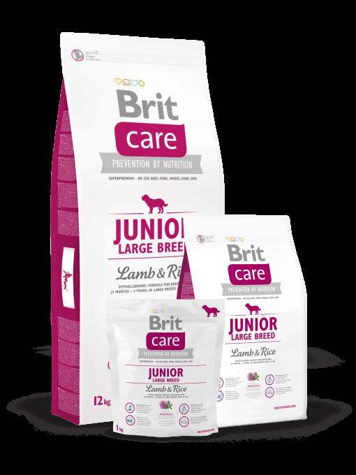 hrana caini Brit Care Junior Talie Mare Miel si Orez