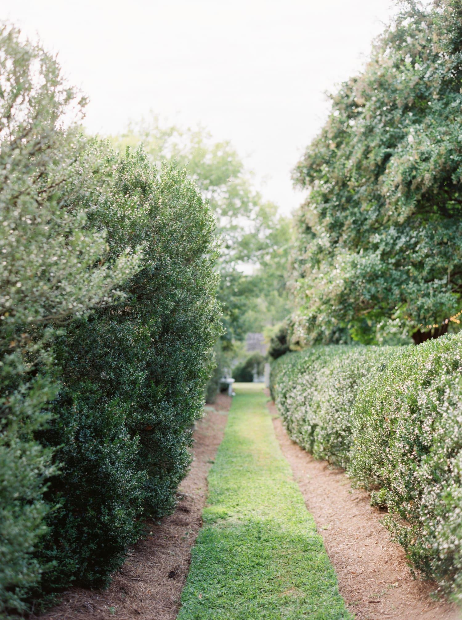 tuckahoe plantation wedding-60