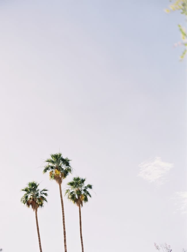 palm-springs-wedding-photographer-jake-anderson-film-10