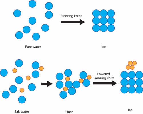 Atomic structure of water and salt