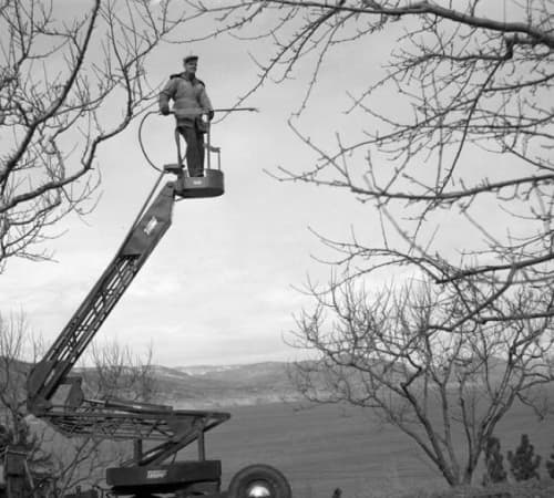 Old black and white cherry picker