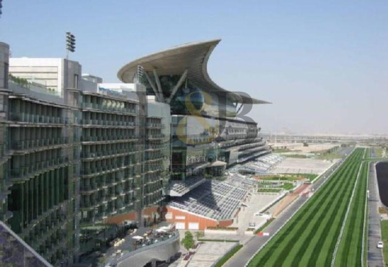 BUILD YOUR OWN HOME MEYDAN RACE COURSE! -