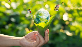 Kind to earth, green solutions