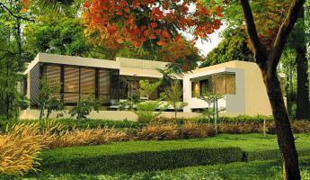 Dubai villas enclosed with forest