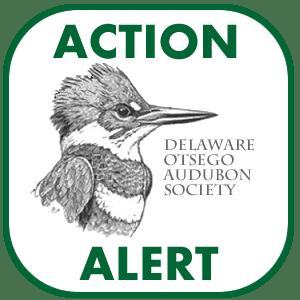 DOAS Action Alert