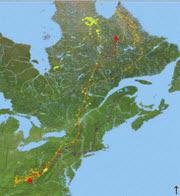 eagletrackingmap
