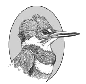 DOAS Kingfisher Logo_trns
