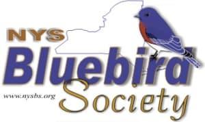 New York State Bluebird Society