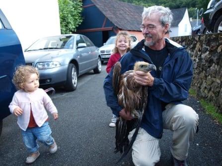 Vulture from Kakoueta Gorge (1)