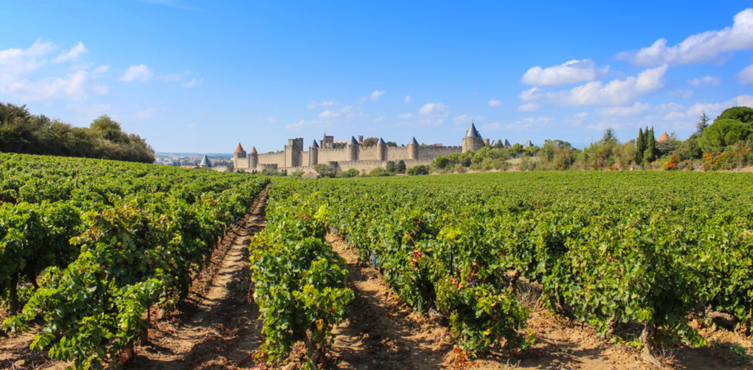 Languedoc-Roussillon cover image