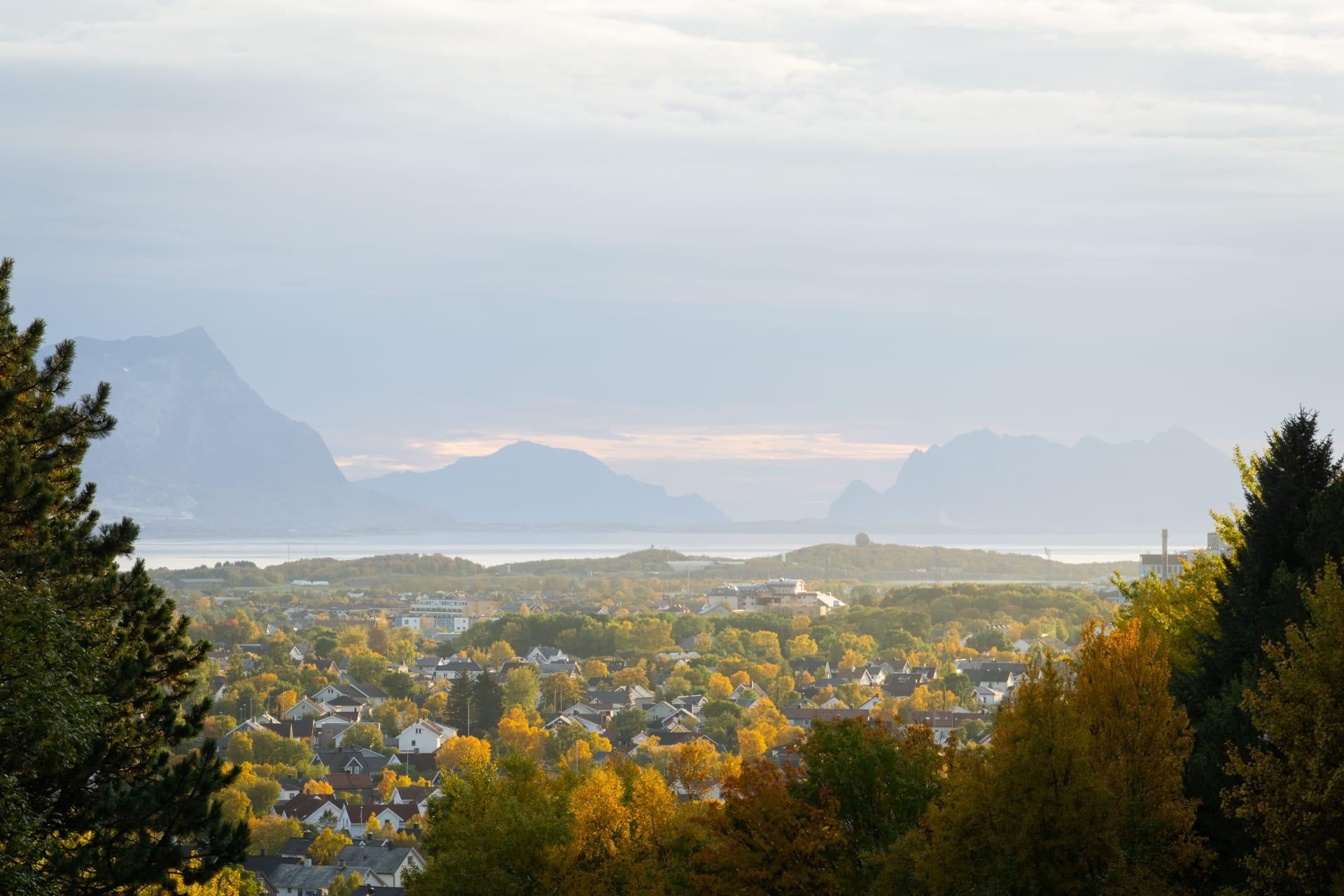 Bodø cover image