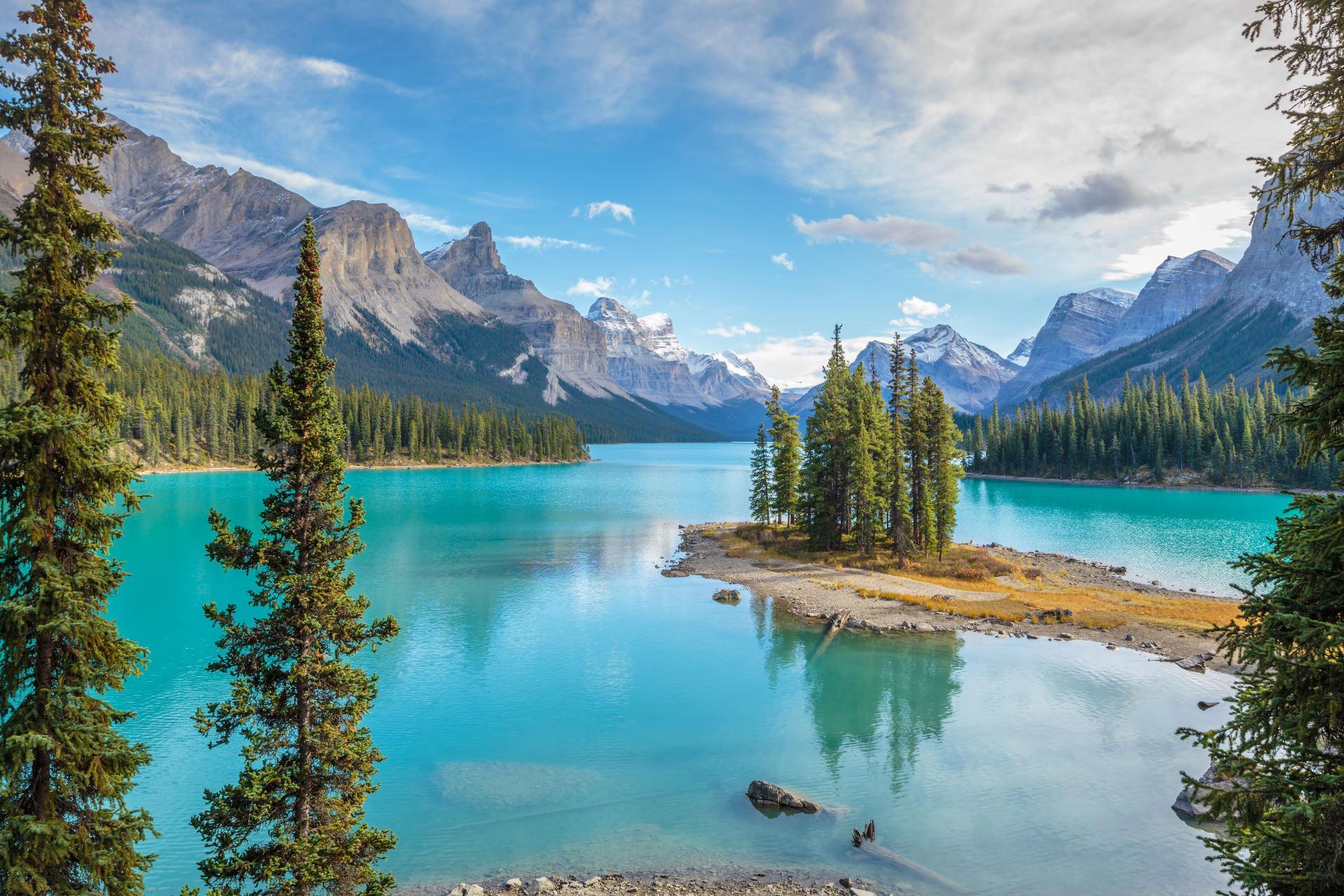 Jasper cover image