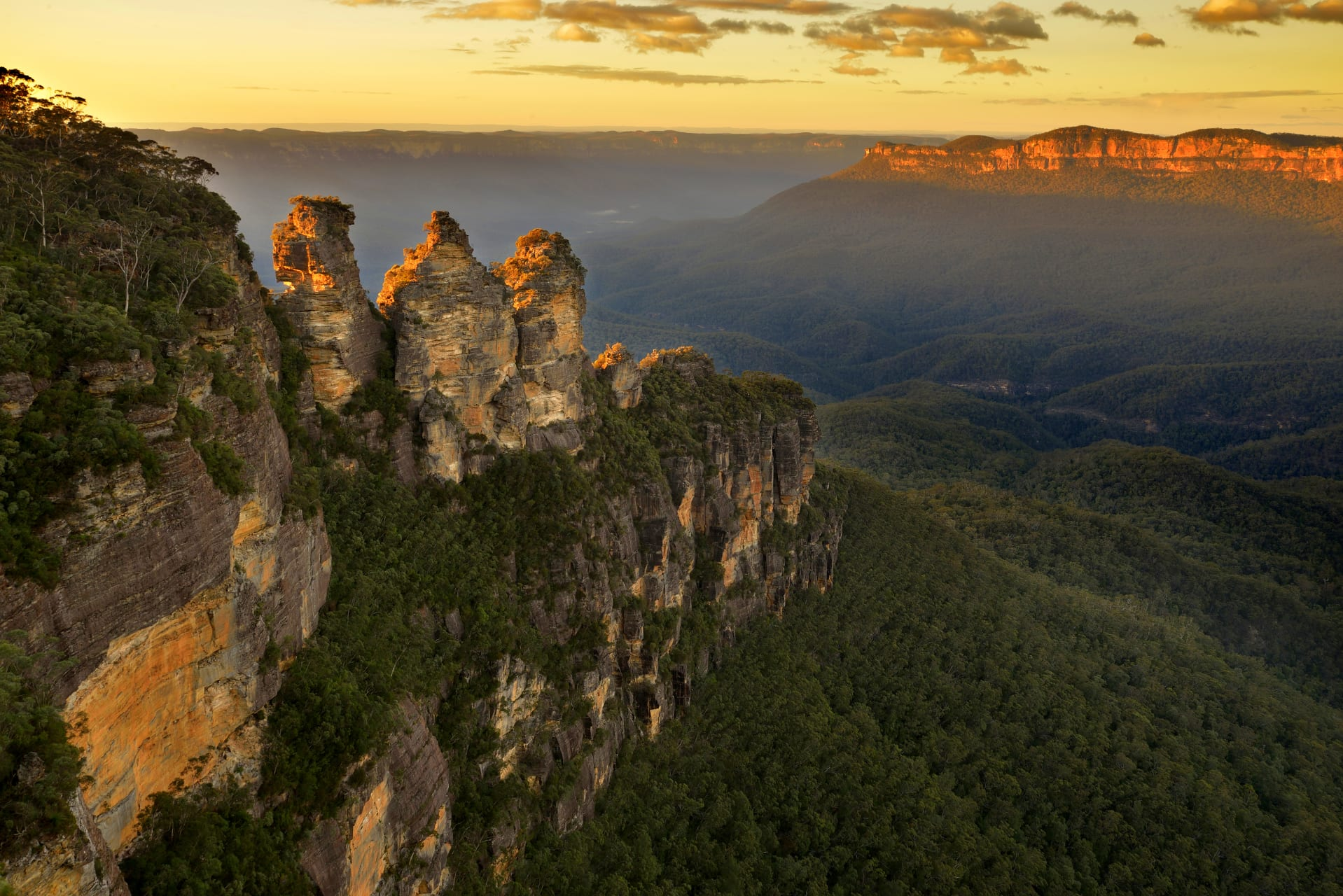New South Wales cover image