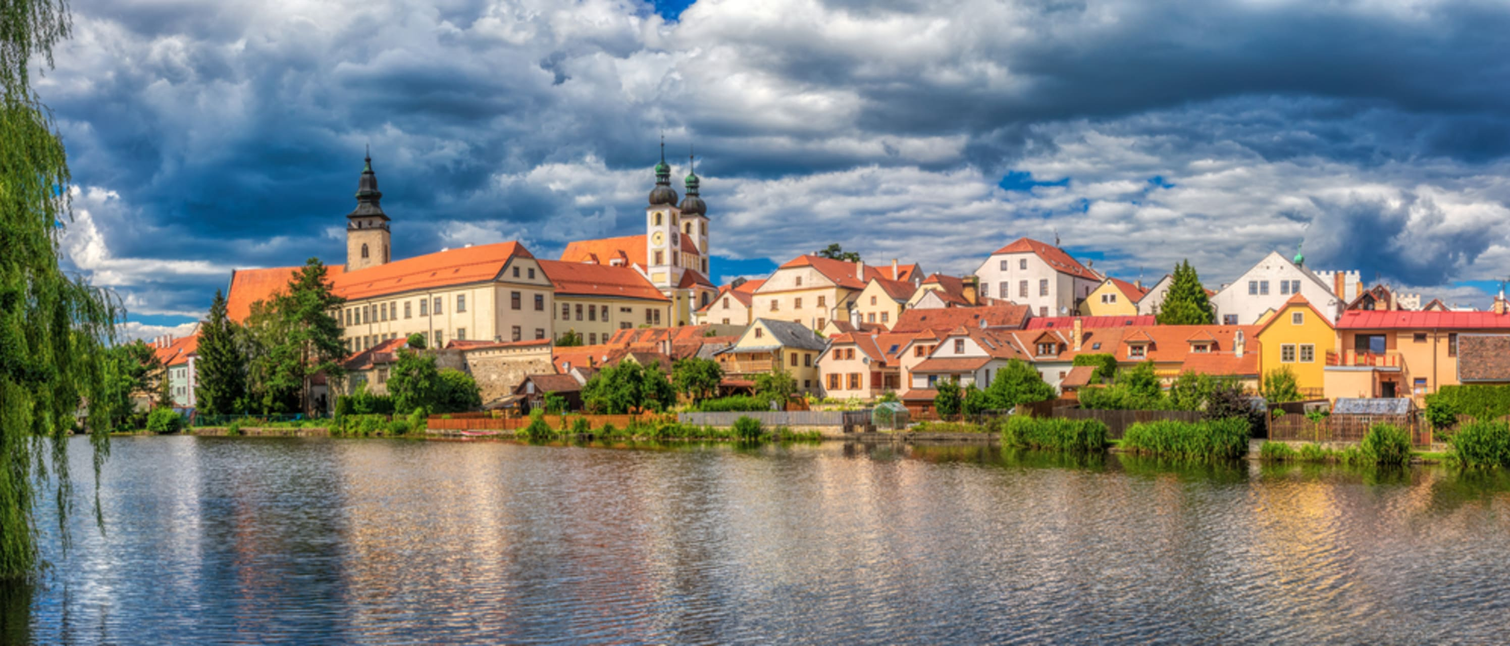 Telc cover image