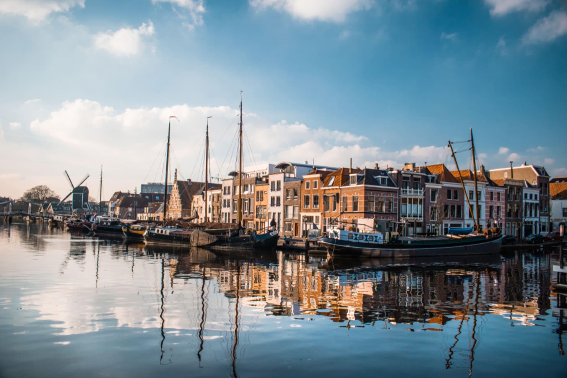 Leiden cover image
