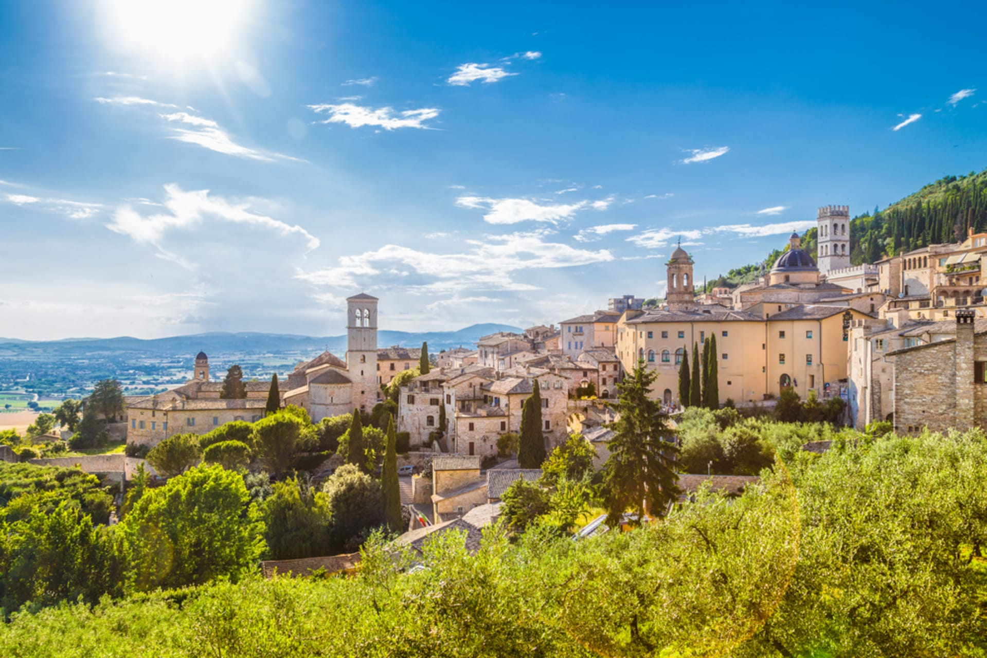 Assisi cover image