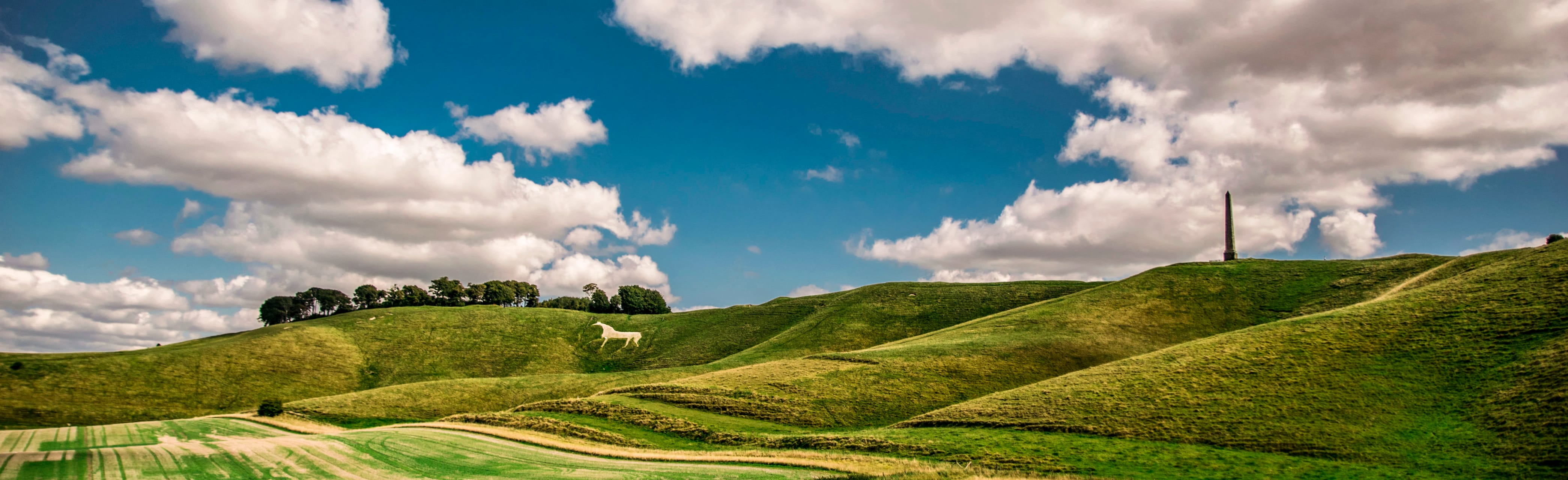 Wiltshire cover image