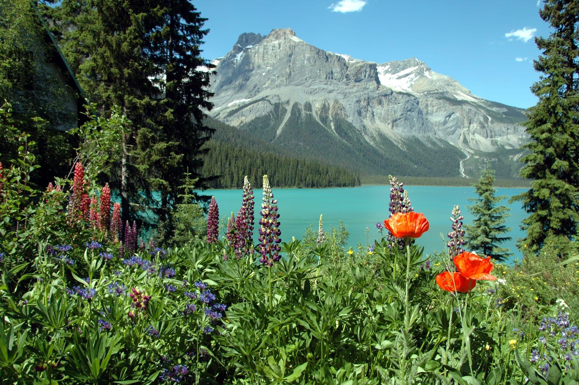British Columbia Road Trip