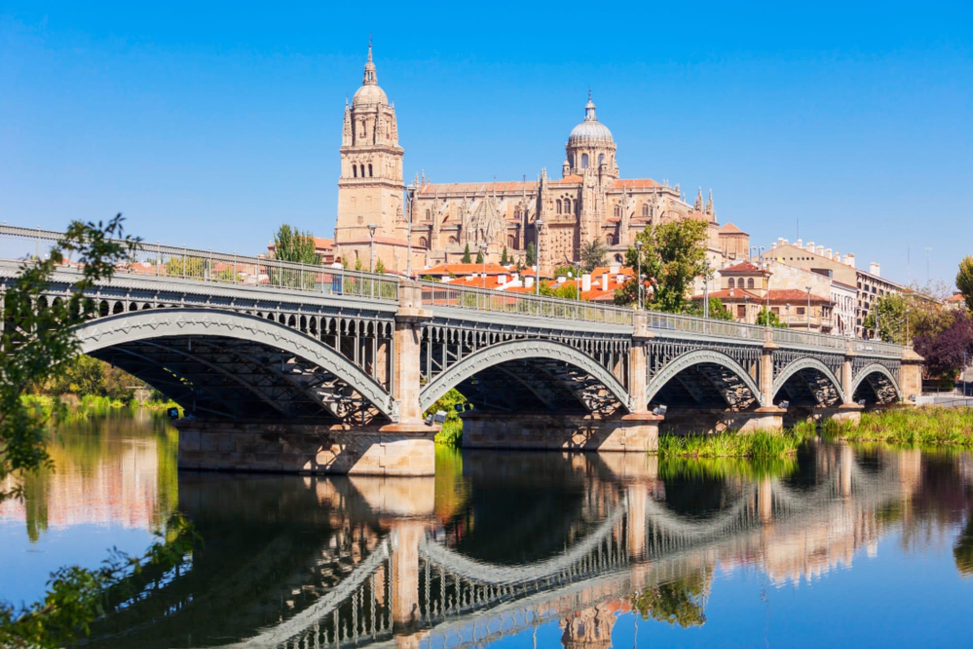 Salamanca - Highlights of Salamanca from Plaza Mayor to the Cathedral