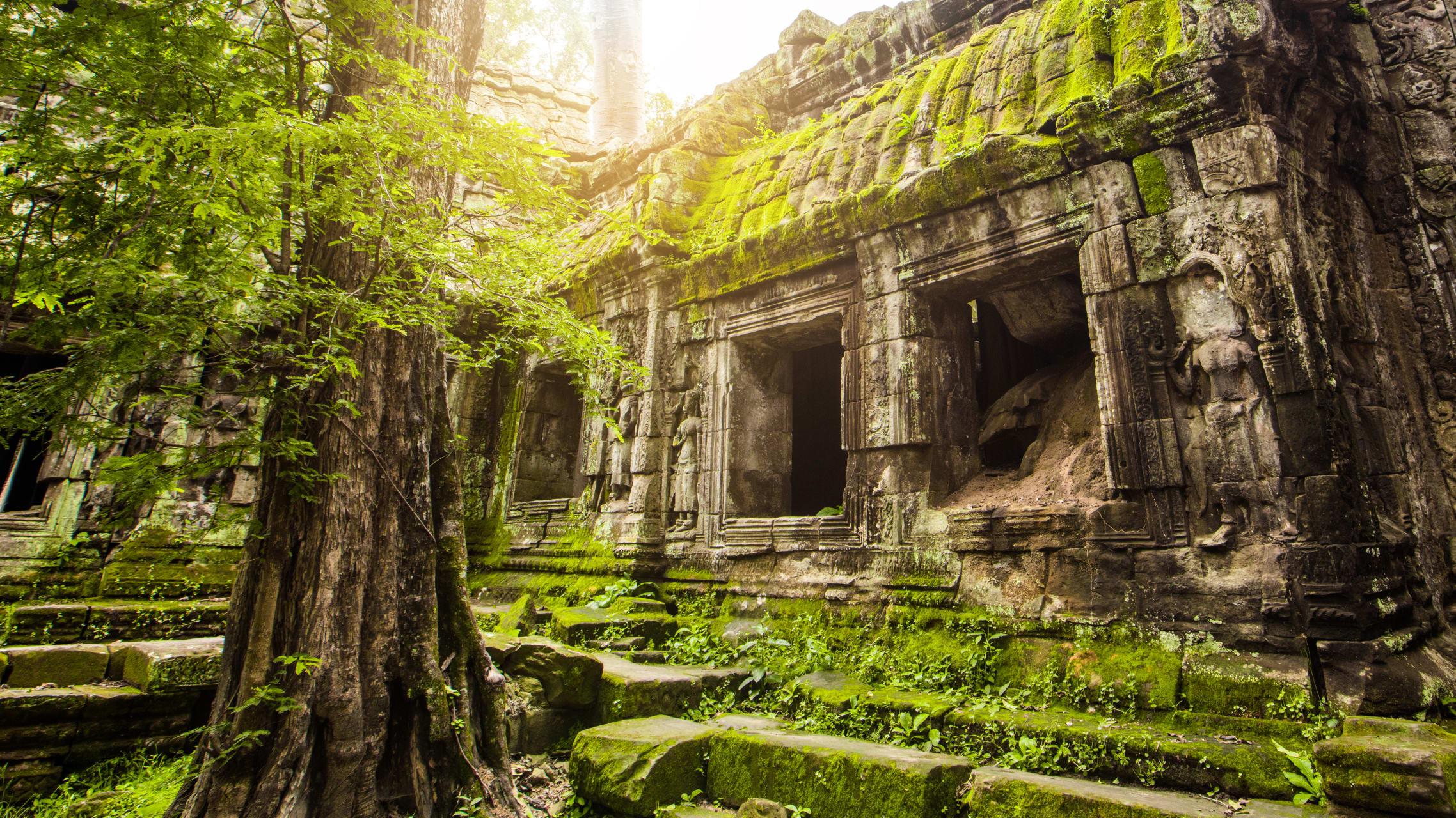 Siem Reap - Ta Prohm – the Tomb Raider Temple