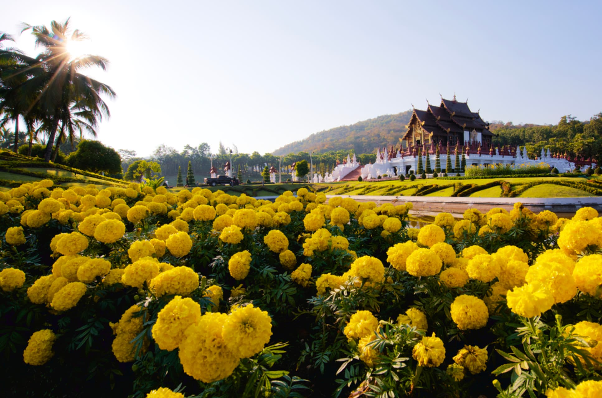 Chiang Mai - Royal Ratchapruek ,Lanna art and garden