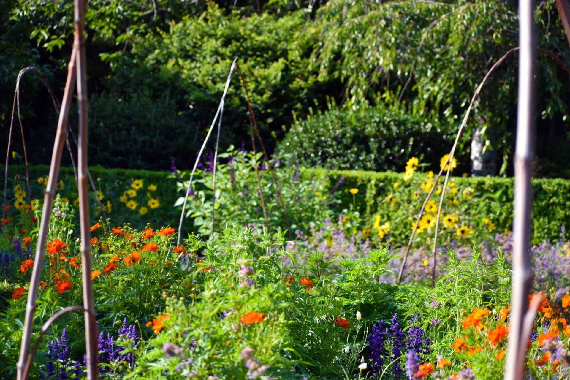 California - Filoli | Fruitful Garden Pt. 2: Medicinal & Pollinator