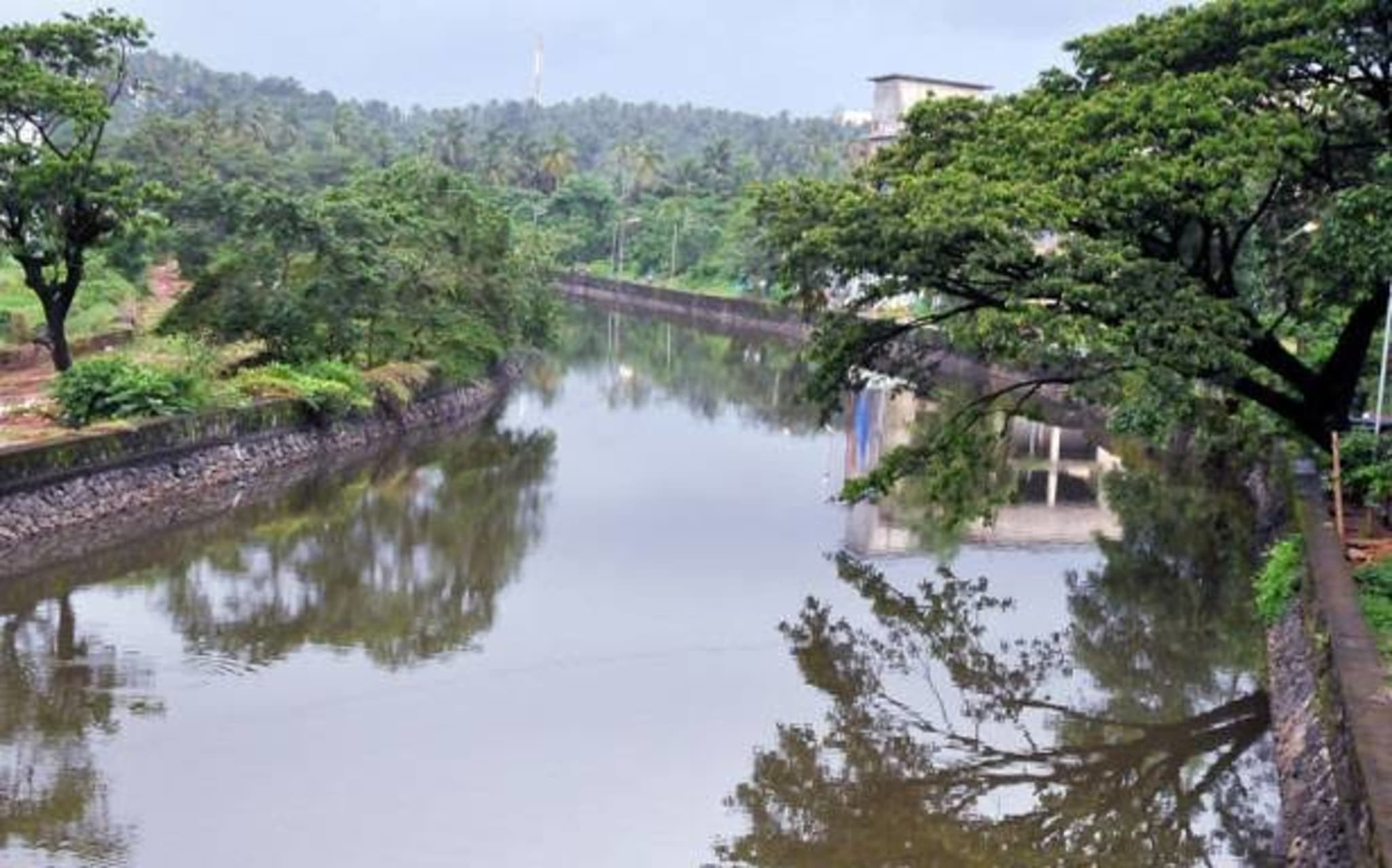 Kerala - Let us Have a Walk with the Nature ; Canoly Canal and Surrounding Area