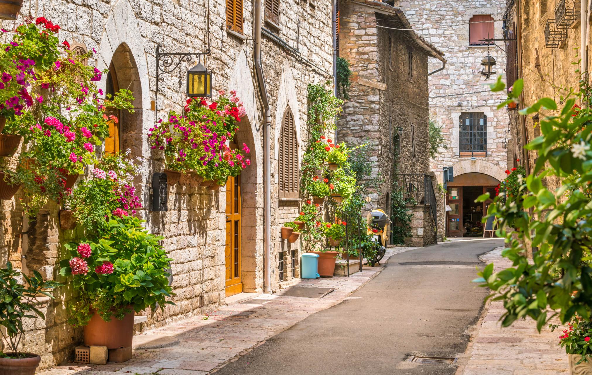 Assisi - District of San Rufino
