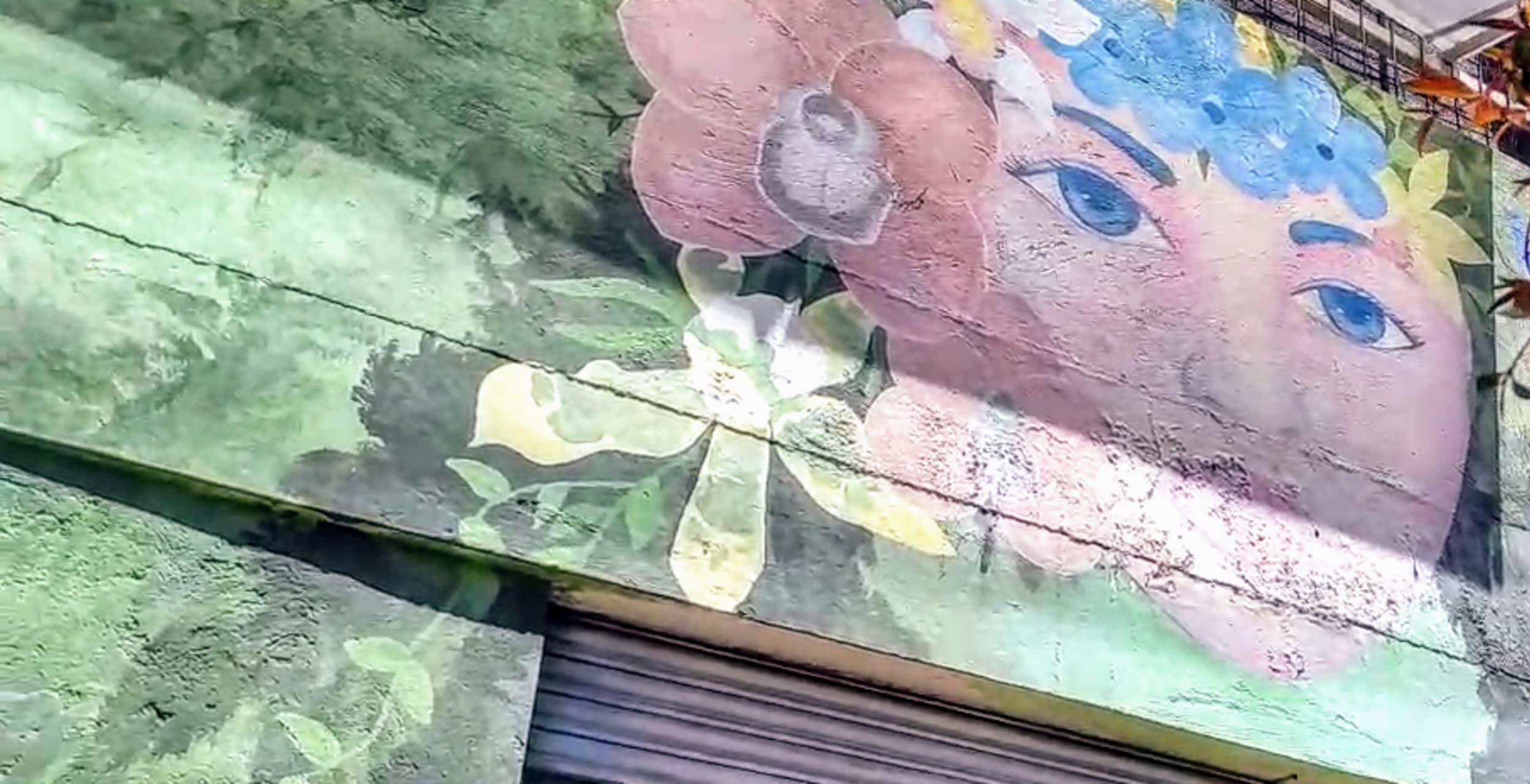 Quito - Famous Quito neighborhood Murals & Orchids