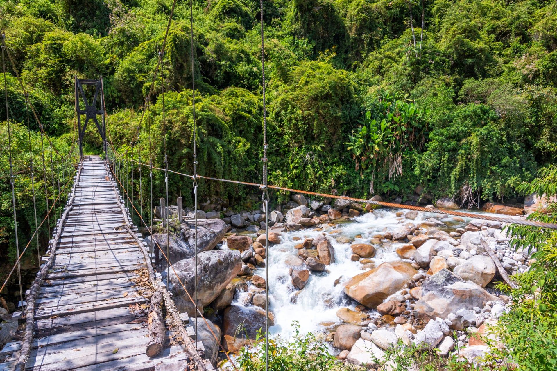 La Paz - coroico: jungle