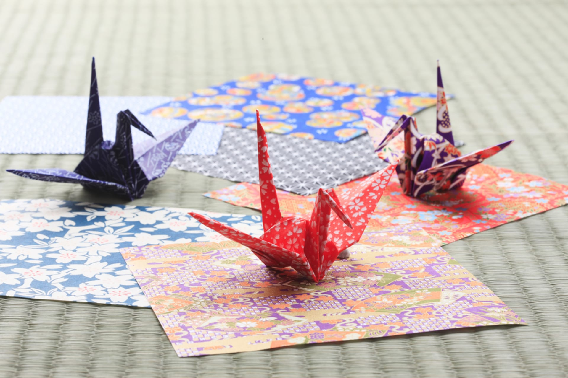 Tokyo - The Art of Paper Folding - Origami