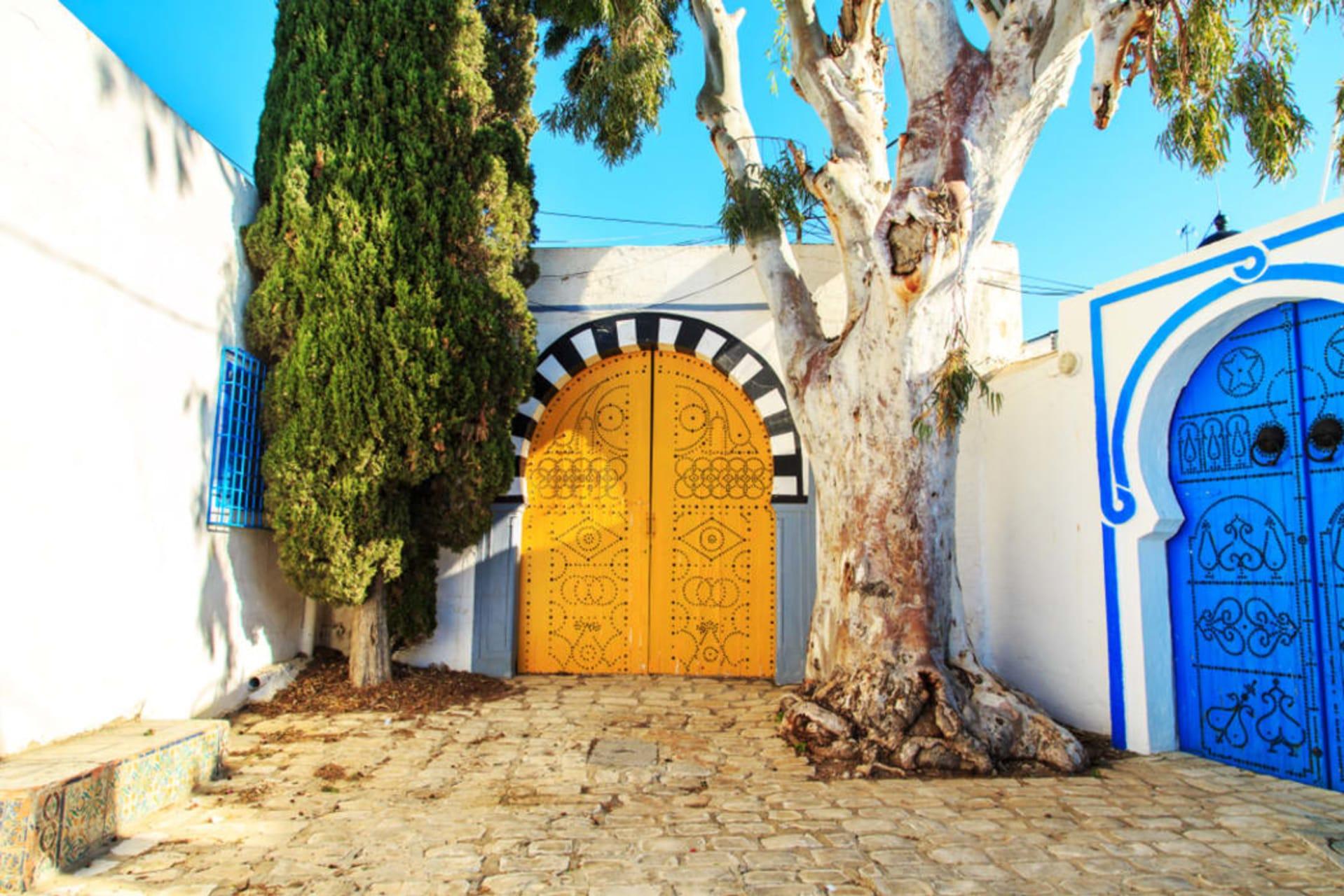 Tunis & Carthage - Mélodie en bleu et blanc à Sidi-Bou-Saïd (TOUR IN FRENCH)
