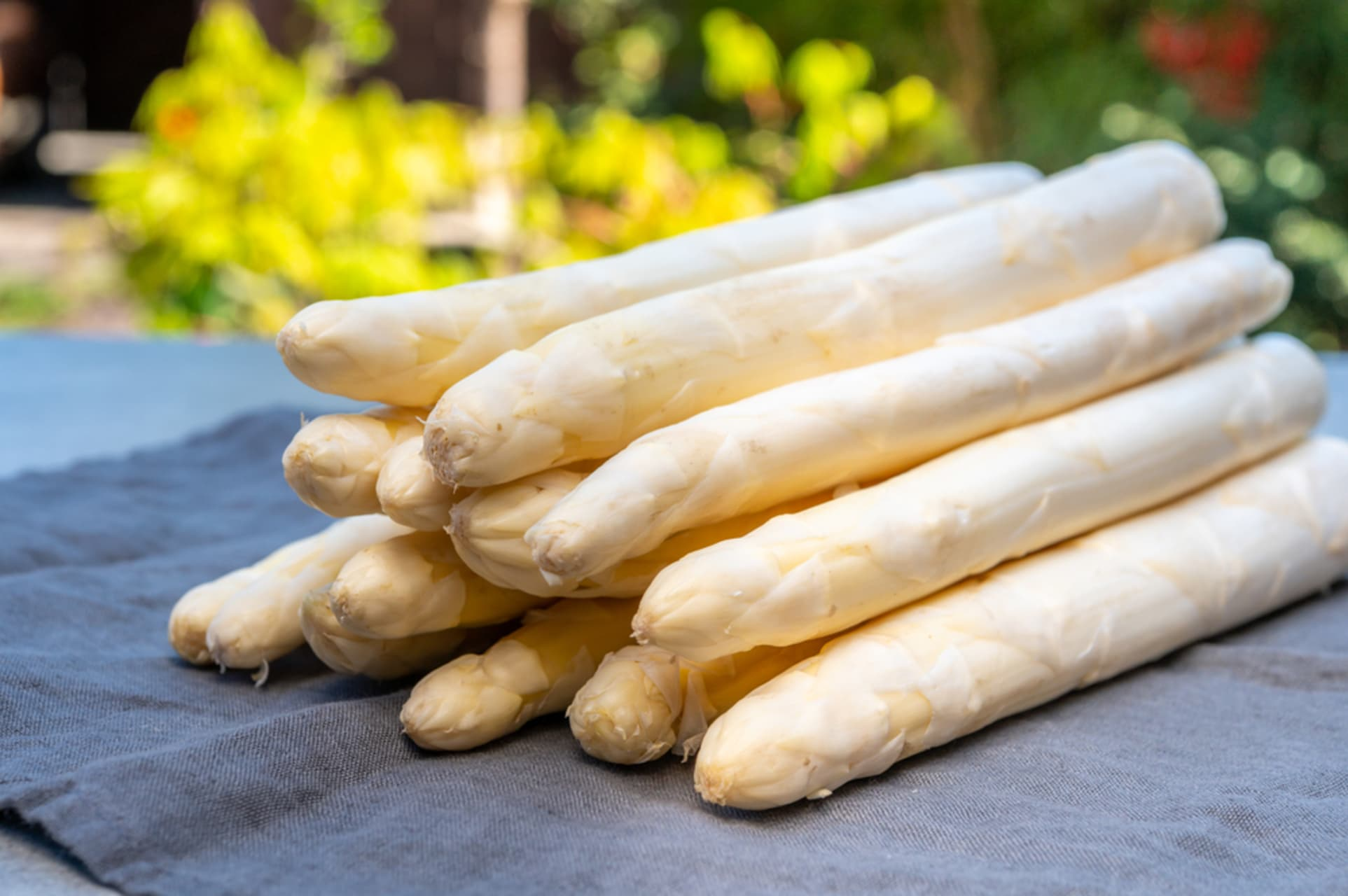 Pamplona - Cooking Class - White Asparagus