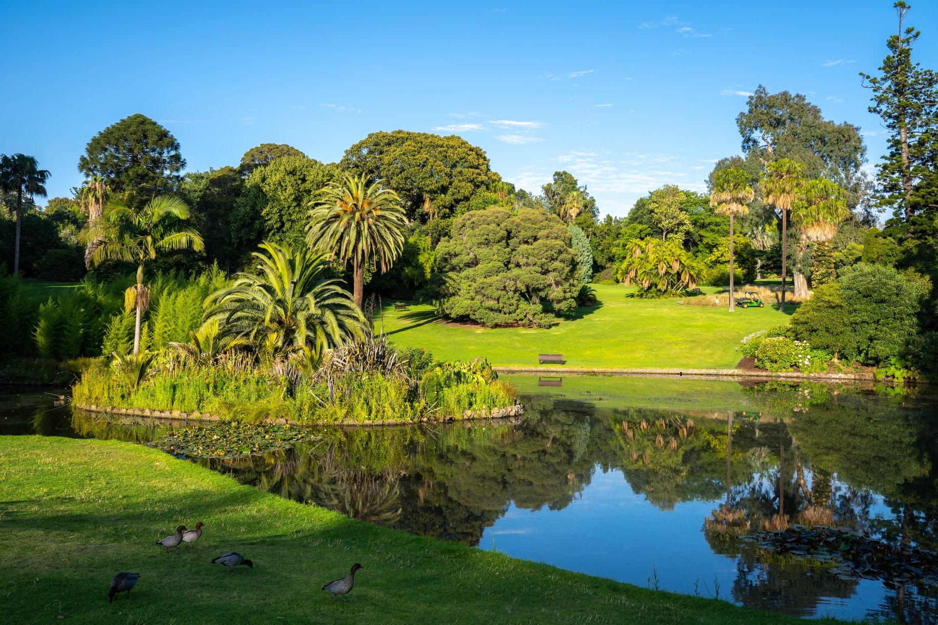 Melbourne - Exploring Melbourne's Royal Botanical Gardens