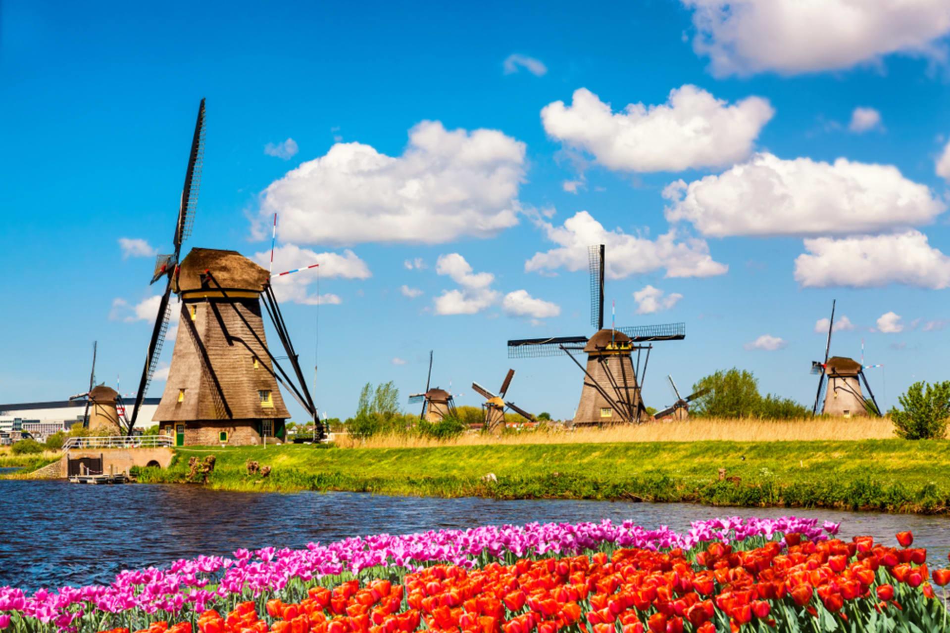 Rotterdam - Kinderdijk, Dutch Windmill Extravaganza