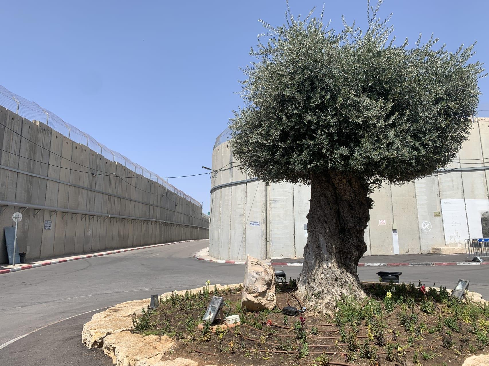 Jerusalem - The Security Barrier Between Jerusalem and Bethlehem
