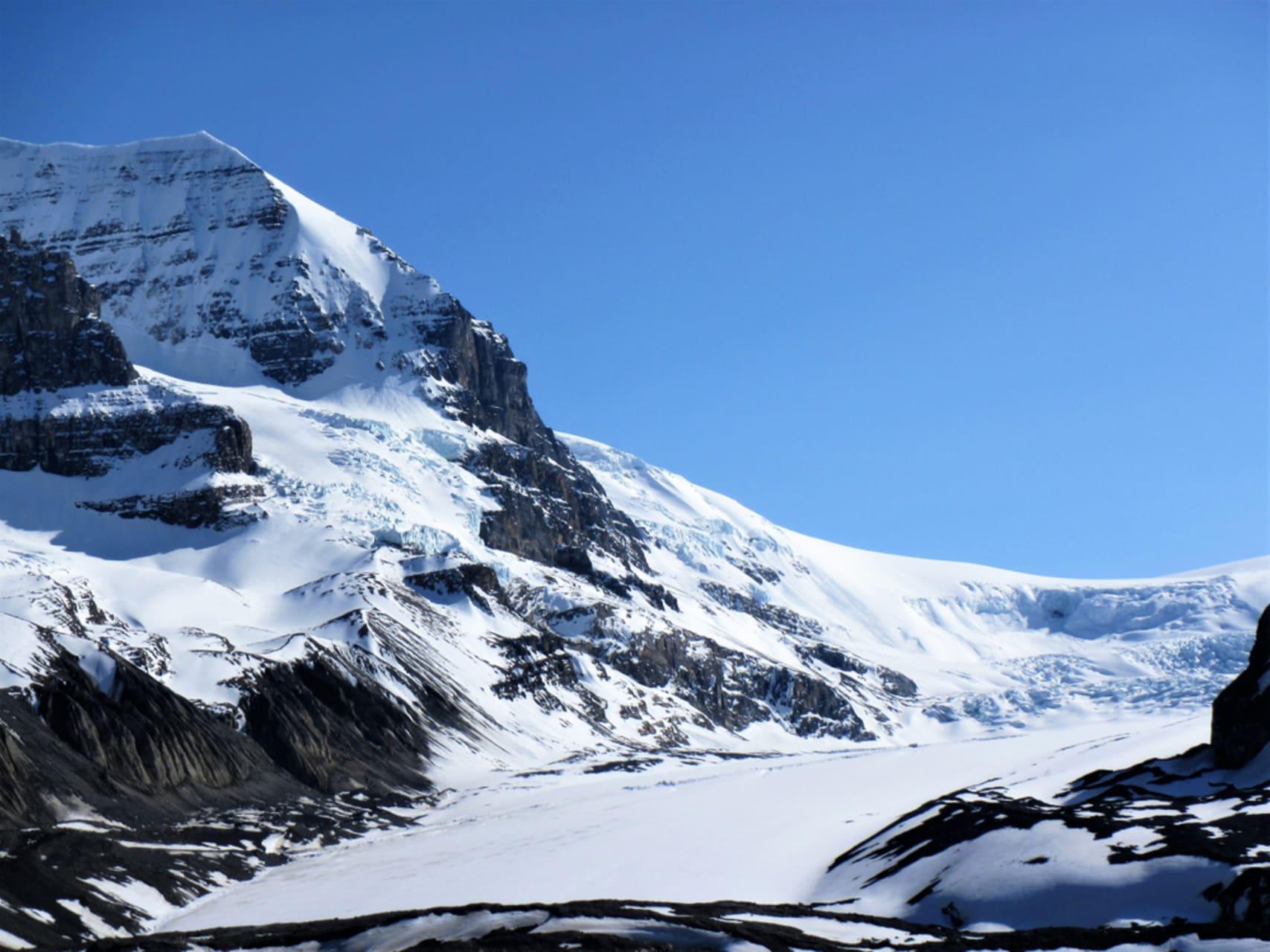 Jasper - The Columbia Icefields