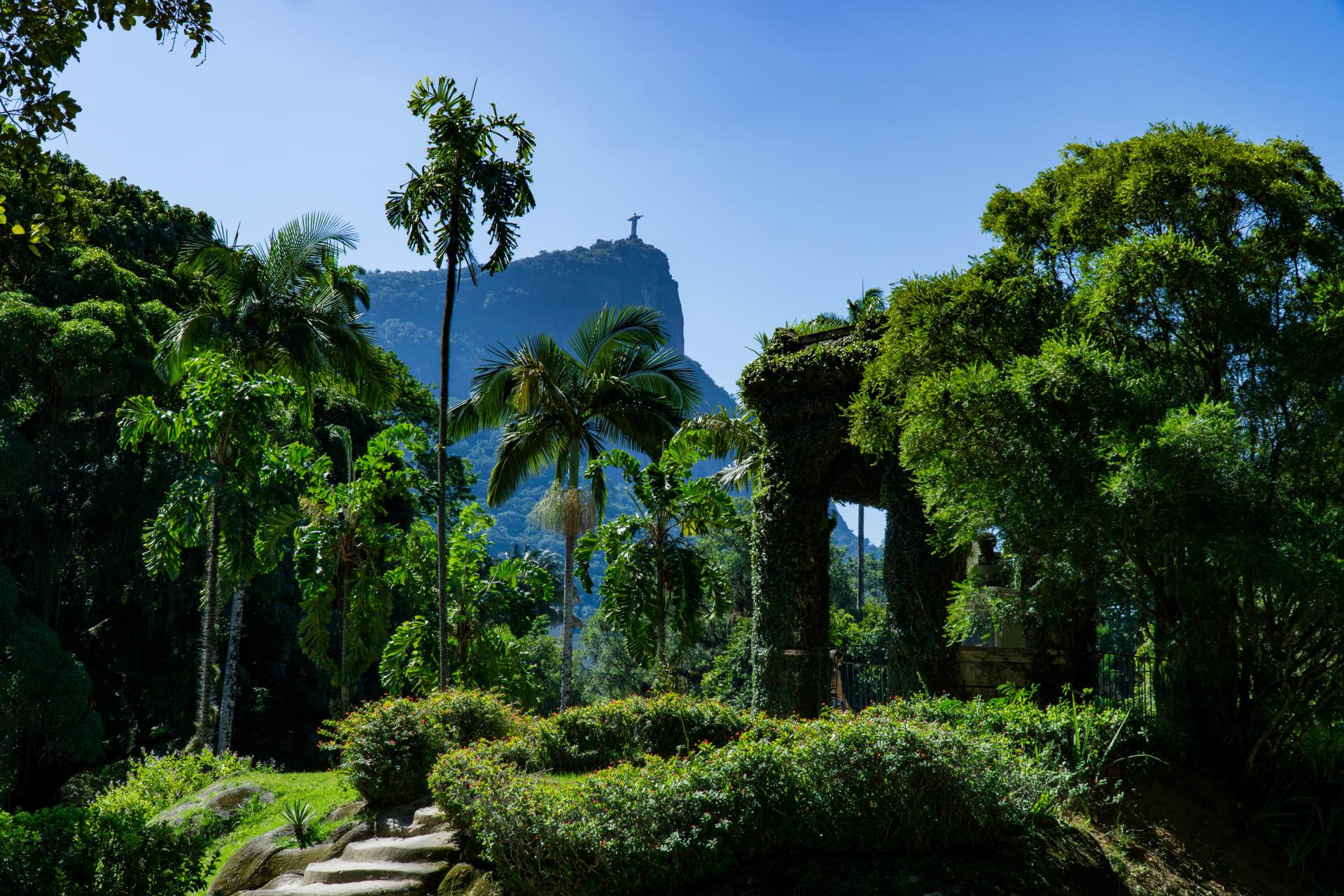 Rio de Janeiro - Botanical Garden