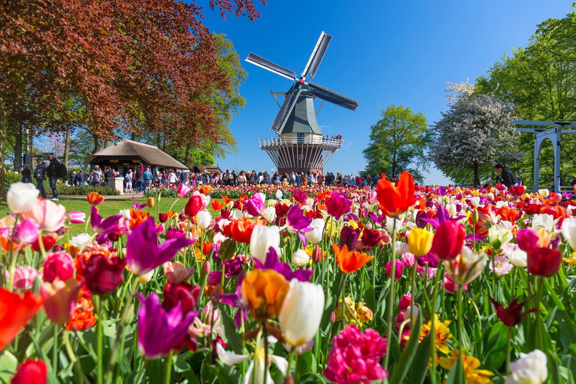 Leiden - The Keukenhof: The Most Beautiful Spring Garden in the World