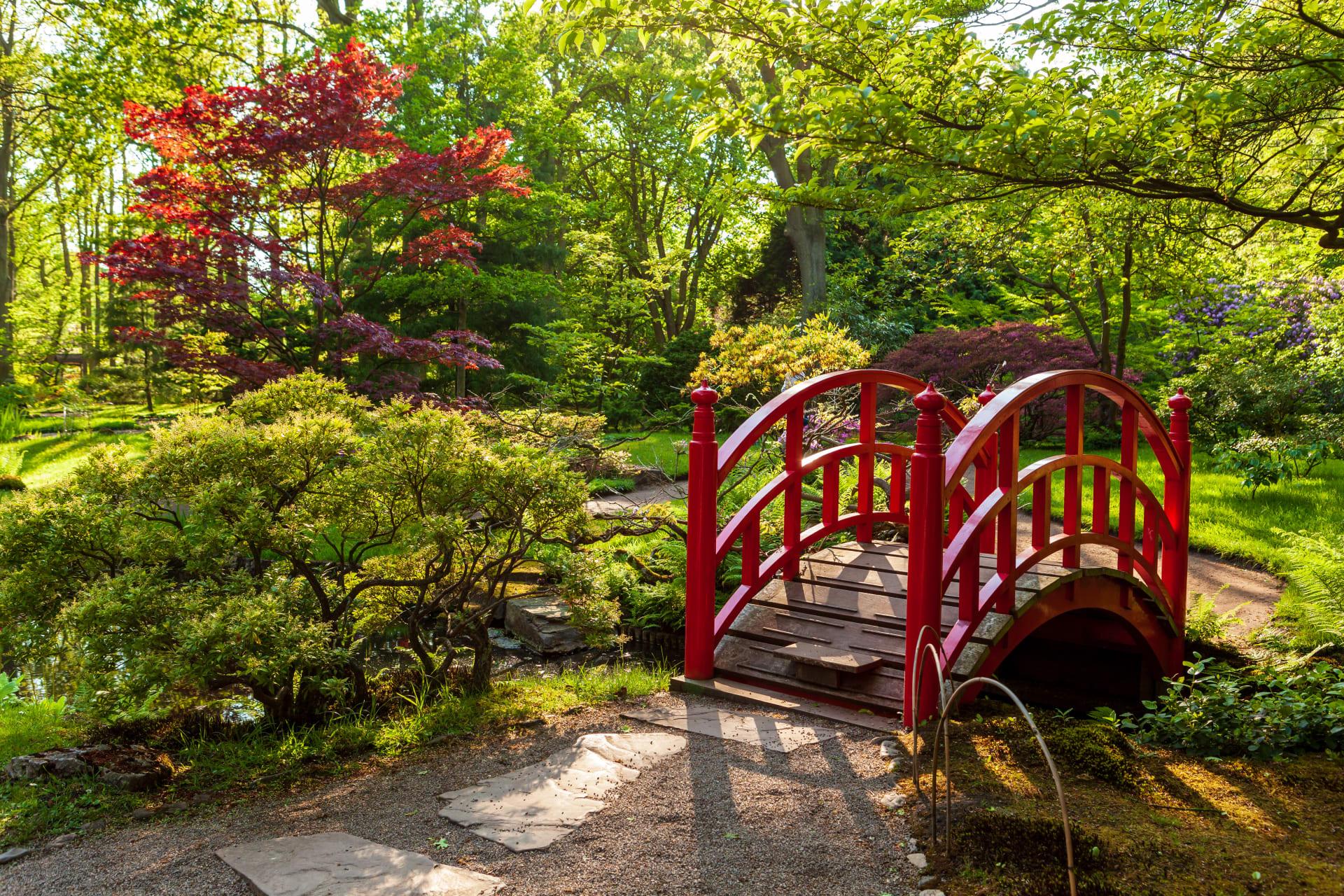 The Hague - Scenic Japanese Garden in Clingendael Estate The Hague