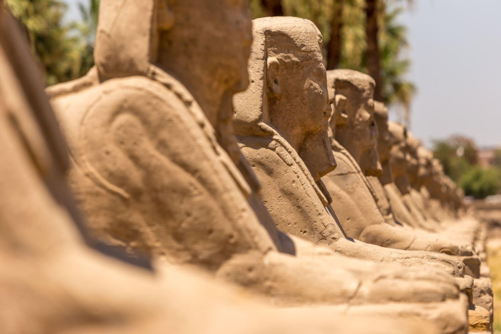 Luxor - A walk of Sphinxes avenue