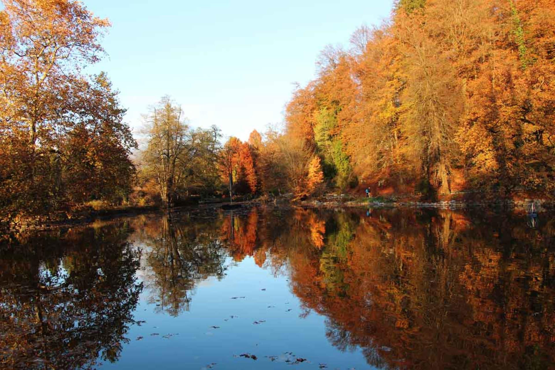 Ljubljana - The Magic of Autumn Colours at Arboretum Volčji Potok