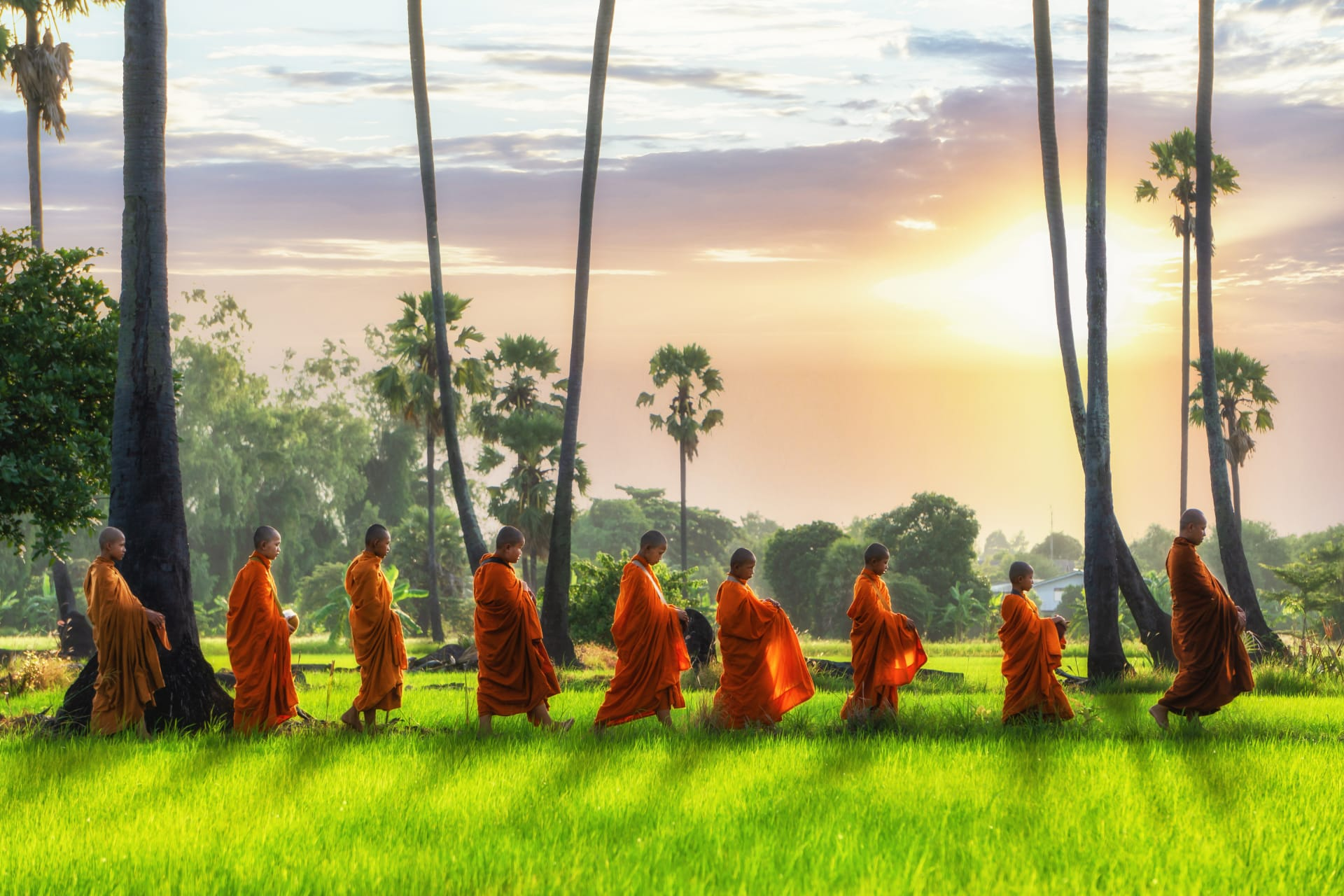Chiang Mai - Offering food to Buddhist monks