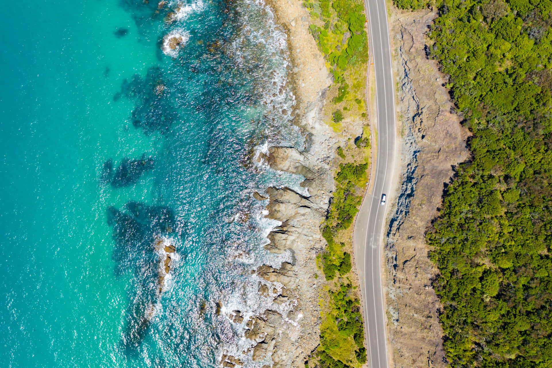 New South Wales - Road Tripping with Alex up the Coast of Australia!