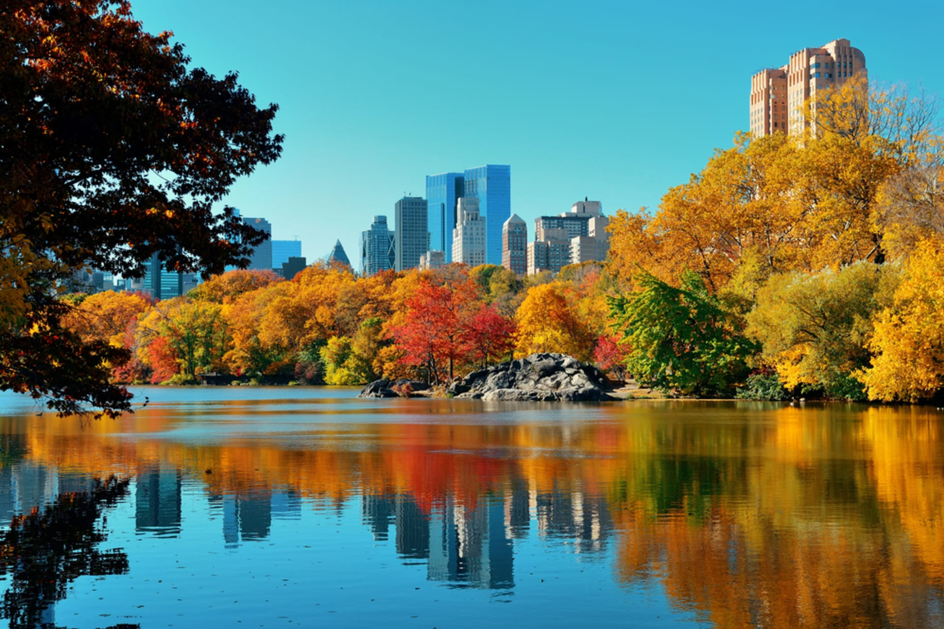 New York - Central Park - All About the Arts