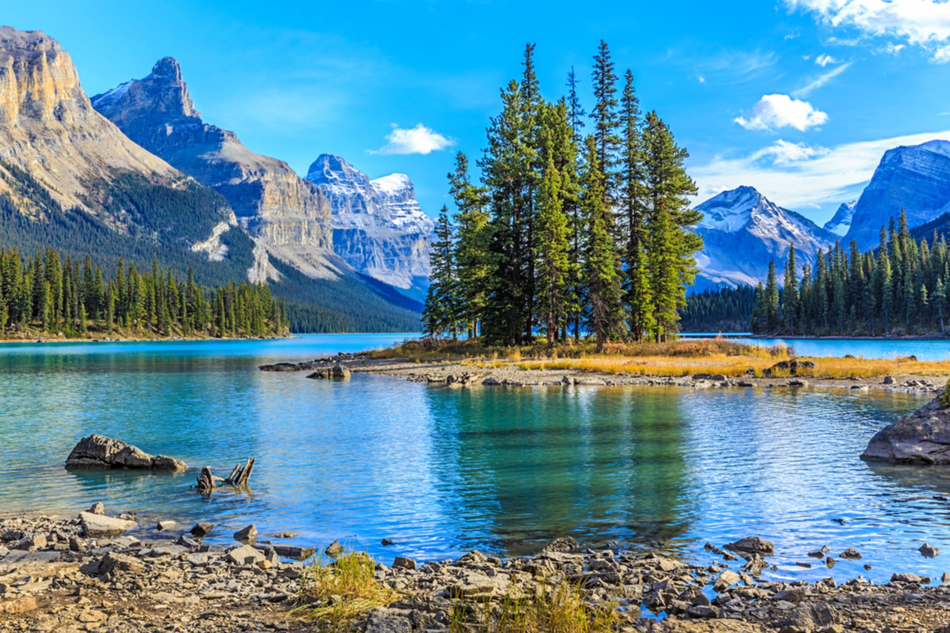 Jasper - Jasper National Park